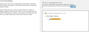 Image of Managed metadata value selected in column creation